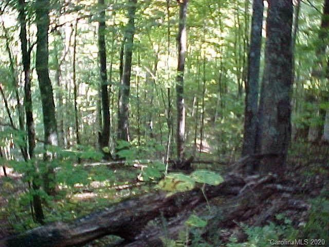 0 Lotties Creek Road, Burnsville, NC 28714 (#3676871) :: Rhonda Wood Realty Group