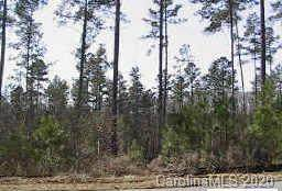 Lot 109 Riverbluff Lane #109, Lilesville, NC 28091 (#3677322) :: Caulder Realty and Land Co.
