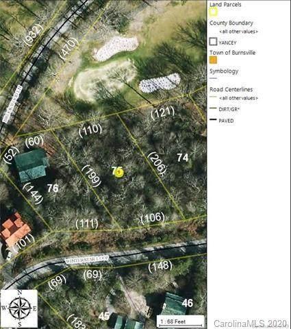 TBD Winterstar Loop #75, Burnsville, NC 28714 (MLS #3677339) :: RE/MAX Journey