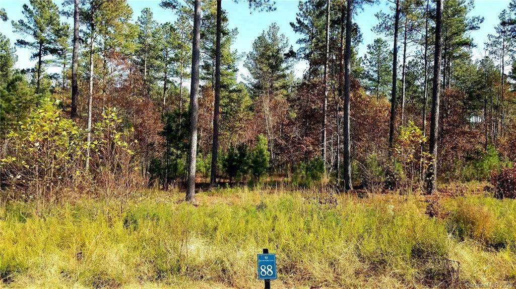 0 Big Pine Drive - Photo 1