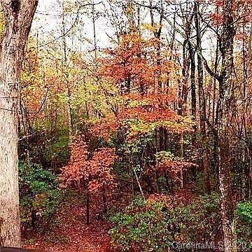 TBD Seldon-Emerson Road, Cedar Mountain, NC 28718 (#3681949) :: Carlyle Properties