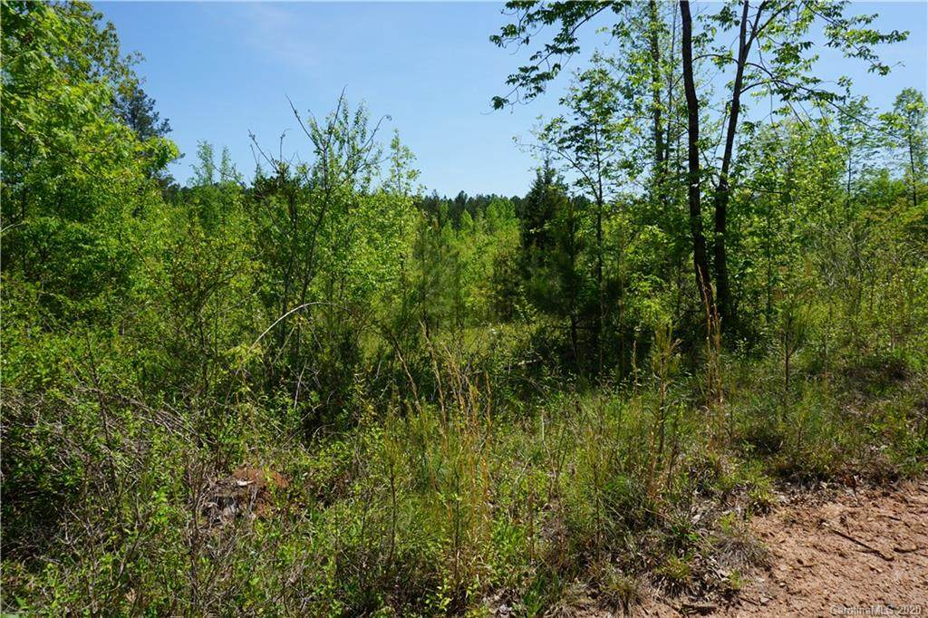 23.5 AC Parson Road - Photo 1