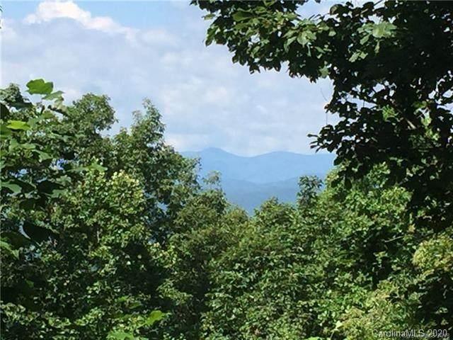 105 Crossvine Trail, Laurel Park, NC 28739 (#3682244) :: Keller Williams Professionals