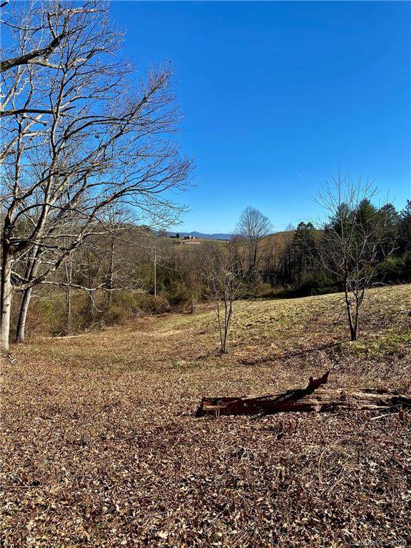 25 Missionary Lane, Leicester, NC 28748 (#3686865) :: NC Mountain Brokers, LLC
