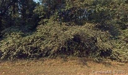 191 Glenn Drive, Mount Holly, NC 28120 (#3686953) :: Scarlett Property Group