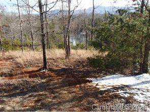Lot Village Park Lane #17, Mill Spring, NC 28756 (#3687746) :: Ann Rudd Group