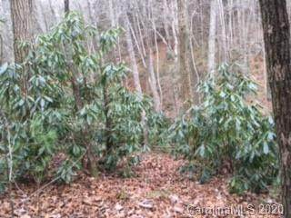 Lot 60/61 Coyote Hollow Road 60 Pt 61, Waynesville, NC 28785 (#3687843) :: Willow Oak, REALTORS®