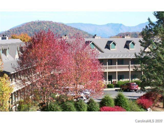 2541 Wolf Laurel Road #109, Mars Hill, NC 28754 (#3688135) :: BluAxis Realty