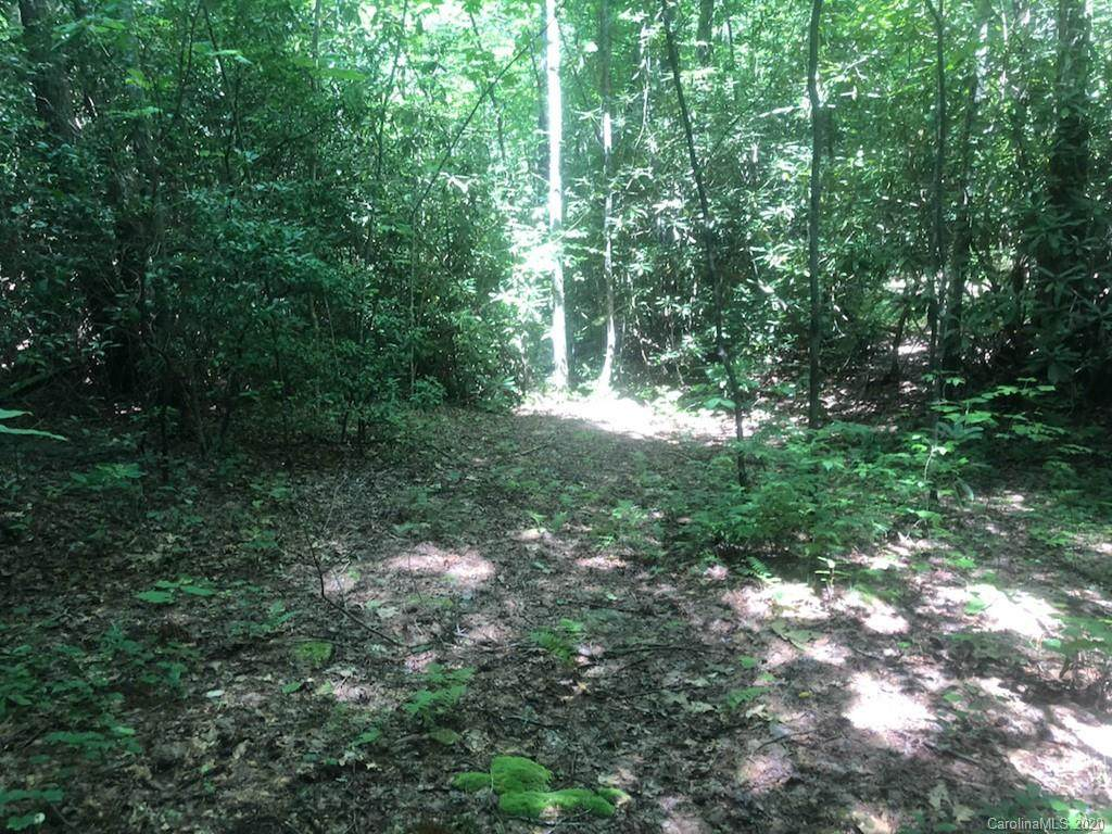 TBD Silver Maple Trail - Photo 1