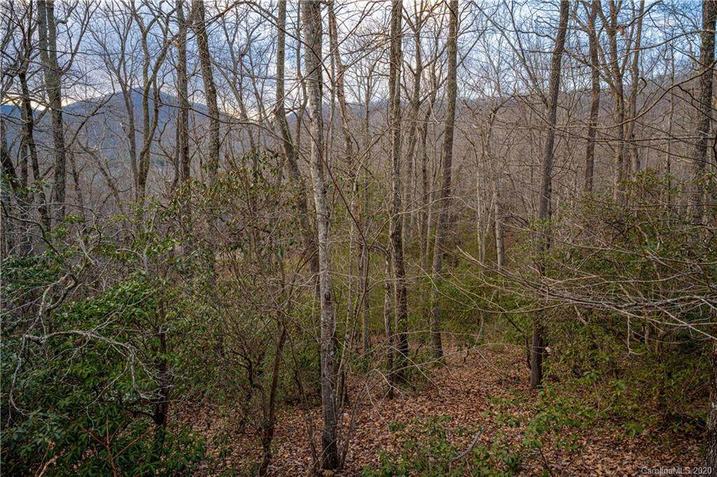 8 Wood Lily Trail - Photo 1