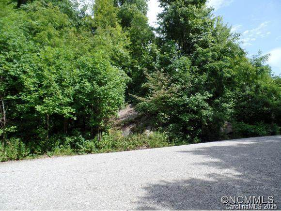 Lots 48 and 51 Eastatoe Gap Road, Rosman, NC 28772 (#3695911) :: Robert Greene Real Estate, Inc.