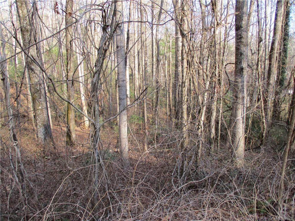256 Burge Mountain Road - Photo 1