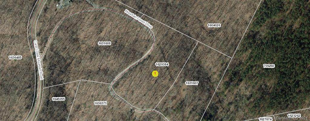 0 Cane Creek Mountain Road - Photo 1