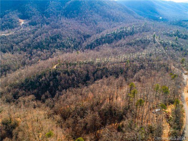 9 Laurel Cottage Lane, Black Mountain, NC 28711 (#3697911) :: Home and Key Realty