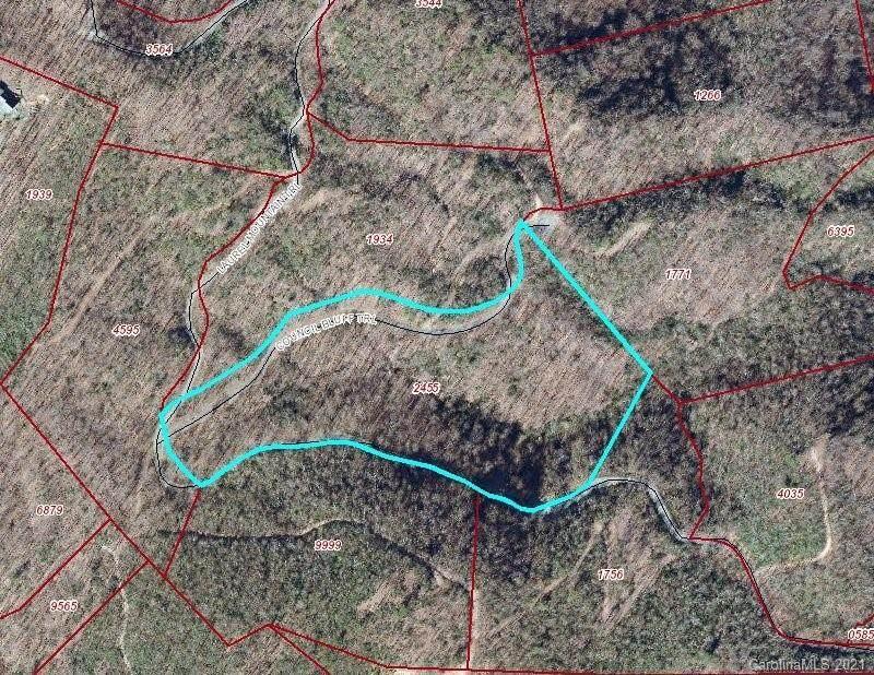 99999 Laurel Mountain Trail - Photo 1