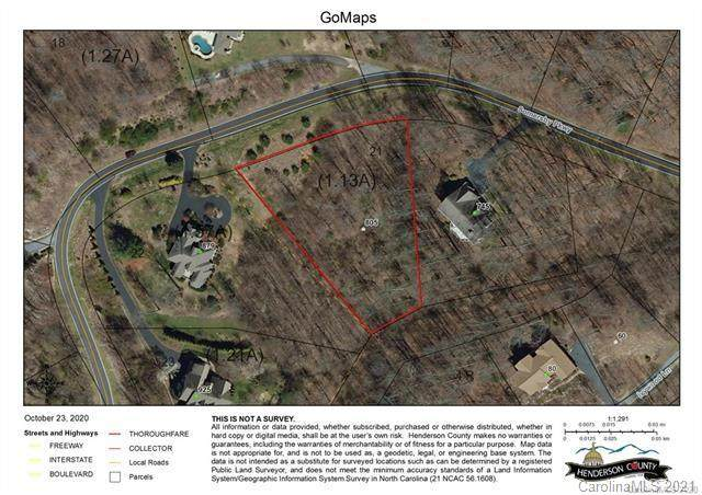 805 Somersby Parkway, Hendersonville, NC 28739 (#3698309) :: LePage Johnson Realty Group, LLC