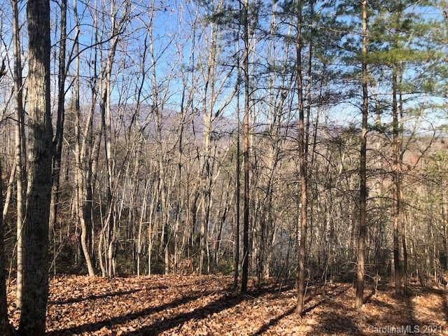 7 Parkway North, Mill Spring, NC 28756 (#3698718) :: Robert Greene Real Estate, Inc.