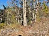 6 Pine Cone Trail - Photo 4