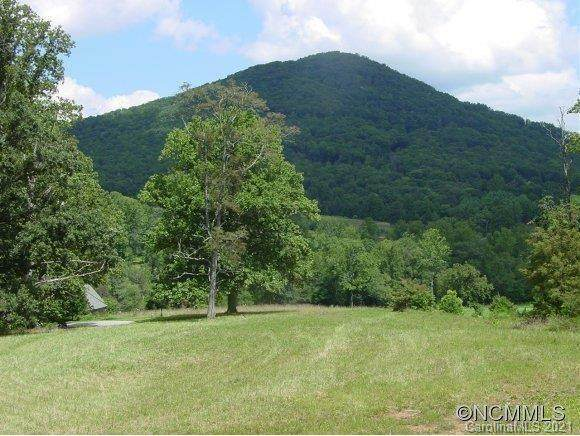 460 Walnut Valley Parkway Lot 92, Arden, NC 28704 (#3701276) :: Premier Realty NC