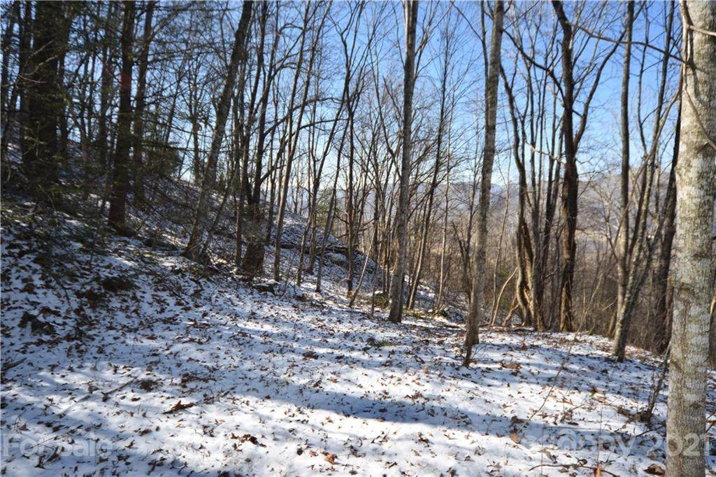 394 Aubrey Trail - Photo 1