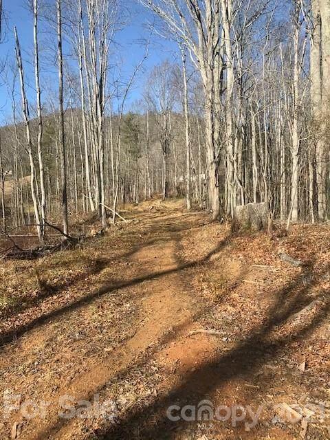 820 Green Mountain Drive, Burnsville, NC 28714 (#3702359) :: Exit Realty Vistas