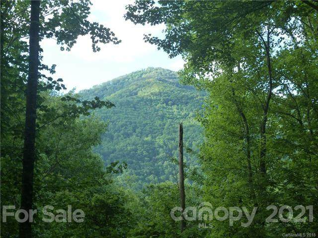 00 Loblolly Way C-17, Maggie Valley, NC 28751 (#3704492) :: Odell Realty