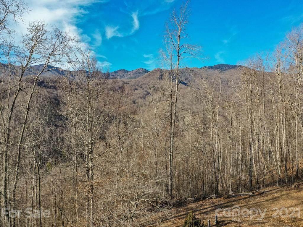 00 Mt Pleasant Church Road - Photo 1
