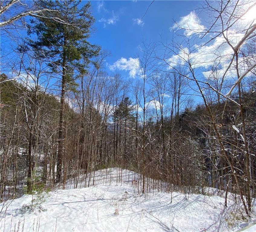 6 Gallant Moose Trail - Photo 1