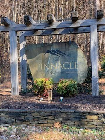 LOT #2 Palisade Drive, Mill Spring, NC 28756 (#3705851) :: High Performance Real Estate Advisors
