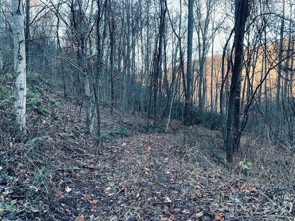 29A Timber Estates Road - Photo 1