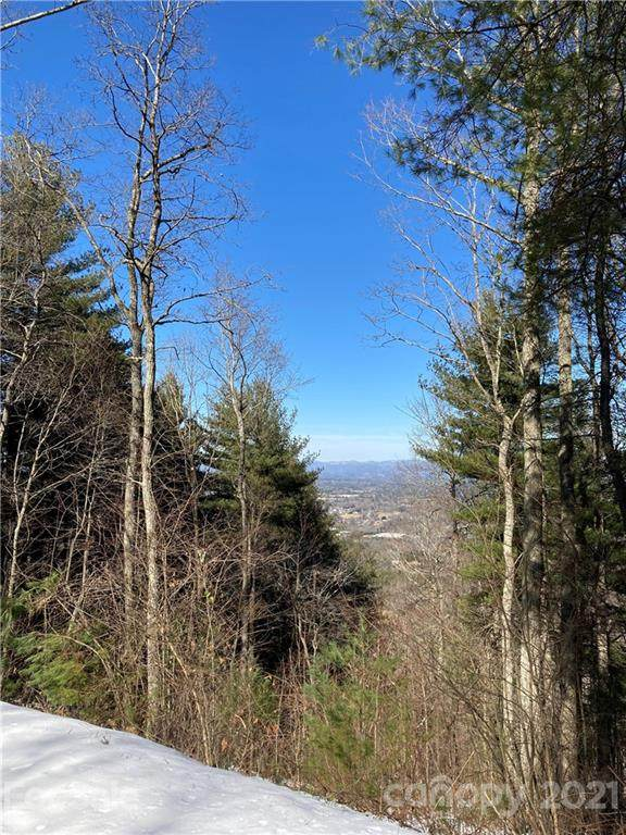 35 Alta Citta Lane #39, Asheville, NC 28804 (#3708710) :: Burton Real Estate Group