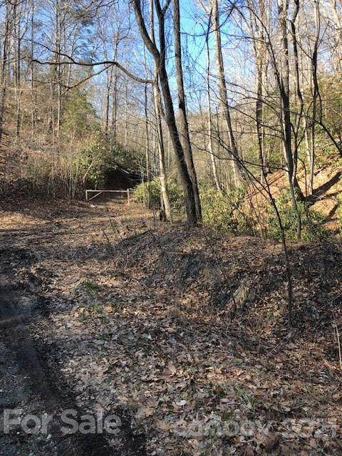 3023 Cedar Creek Road, Chimney Rock, NC 28746 (#3711508) :: Keller Williams Professionals