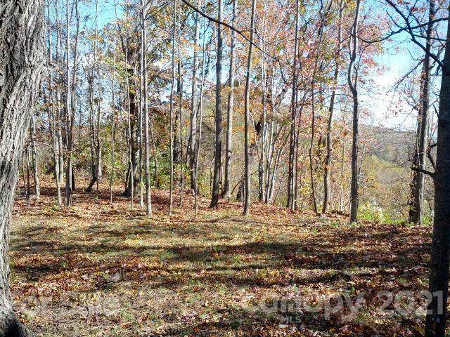 Lot C-11 28 Berry Lane C-11, Black Mountain, NC 28711 (#3712881) :: Keller Williams Professionals