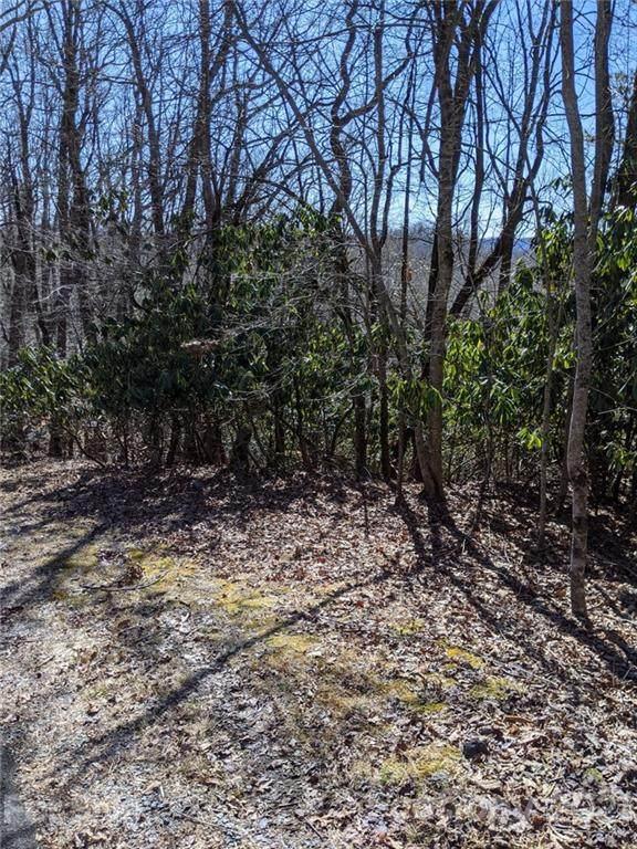 TBD Connestee Trail U02/L406, Brevard, NC 28712 (#3716595) :: Rhonda Wood Realty Group