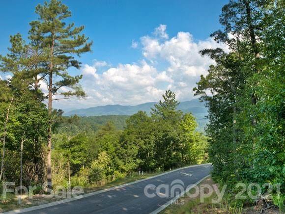 193 Settings Boulevard, Black Mountain, NC 28711 (#3716866) :: Keller Williams Professionals