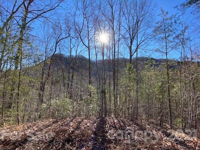 0000 Three Creeks Road #6, Lake Lure, NC 28746 (#3717349) :: Keller Williams South Park