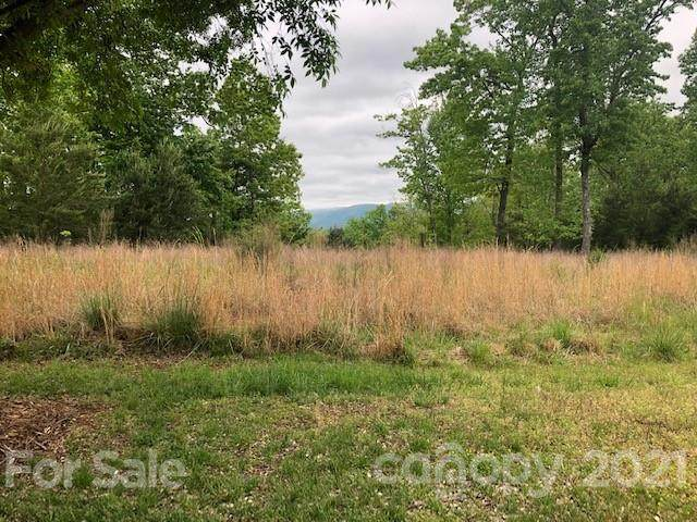 Lot 51 Mountain Parkway, Mill Spring, NC 28756 (#3718413) :: Caulder Realty and Land Co.