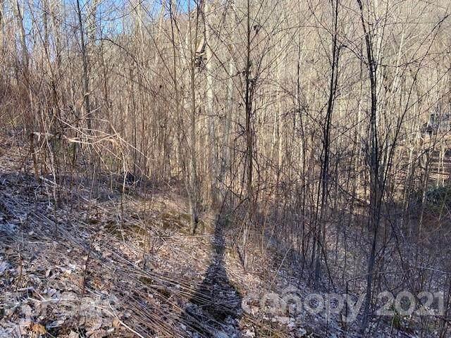 Lots 48H & 52H Gata Trail, Maggie Valley, NC 28751 (#3718813) :: The Allen Team