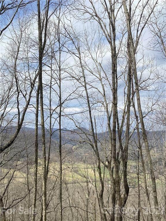 99999 Laurel Drive #11, Mills River, NC 28759 (#3718826) :: Cloninger Properties