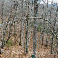 166 Trout Lily Lane #166, Tuckasegee, NC 28783 (#3719057) :: Rhonda Wood Realty Group