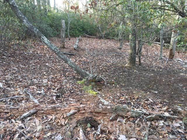 256 Deer Walk #256, Old Fort, NC 28762 (#3719813) :: Lake Wylie Realty