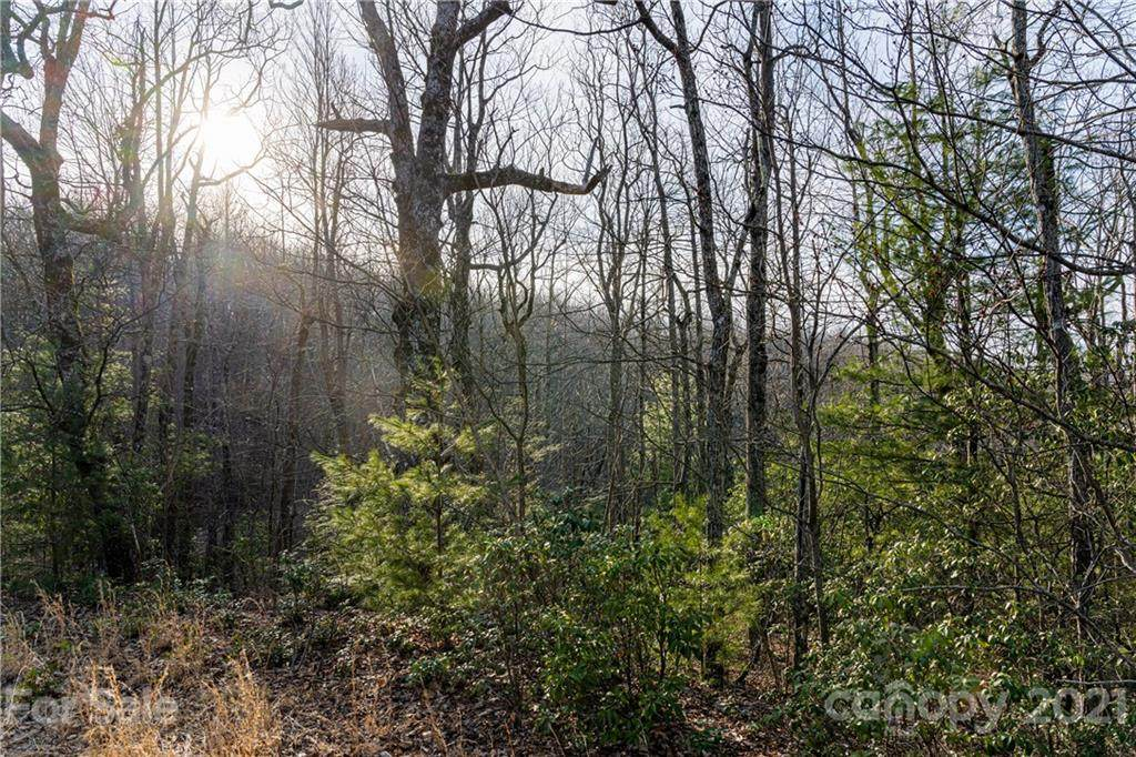 167 Shoal Creek Road - Photo 1