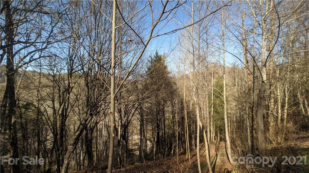 Lot 8 Bear River Lodge Trail - Photo 1