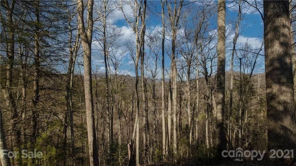 Lot 17 Wolf Bluff Trail - Photo 1