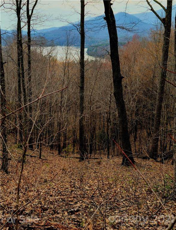 0 Hawks Nest Trail, Lake Lure, NC 28746 (#3723406) :: Scarlett Property Group