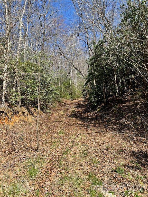 Lot #43 Moonlight Drive #43, Bryson City, NC 28713 (#3724000) :: Carolina Real Estate Experts