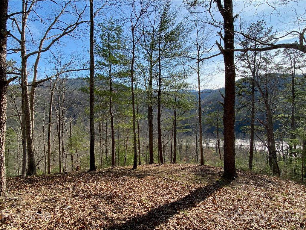 46 French Broad Parkway - Photo 1