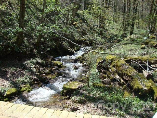 00 Tumbling Fork Road, Waynesville, NC 28786 (#3726141) :: Stephen Cooley Real Estate Group