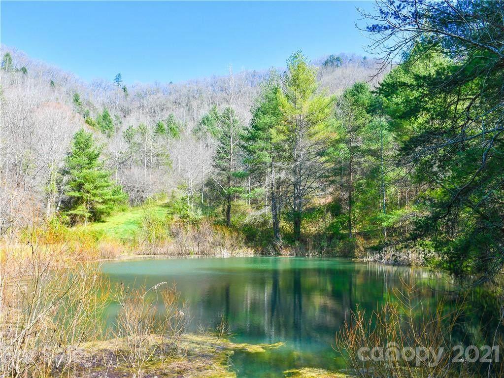 353 Sandy Mush Creek Road - Photo 1