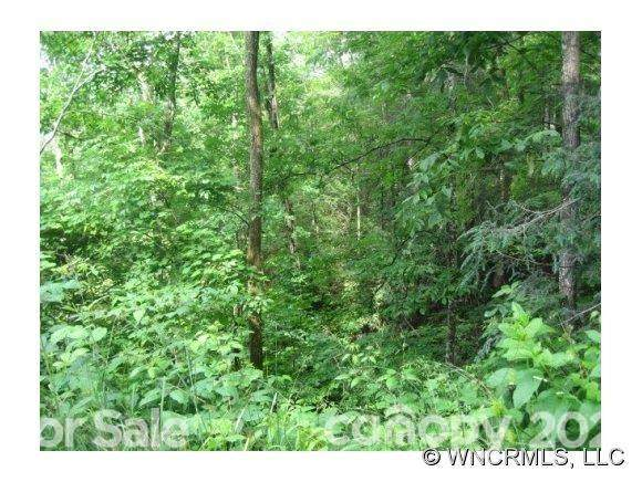 Lot 81 Bear River Lodge Trail #81, Marshall, NC 28753 (#3727472) :: Willow Oak, REALTORS®